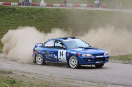 TM Rallysport In Action 2